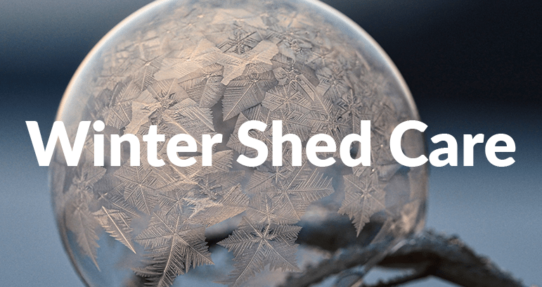 A picture of a orange-tinted frozen bubble, sitting in a branch with the words 'Winter Shed Care' emblazoned across it.