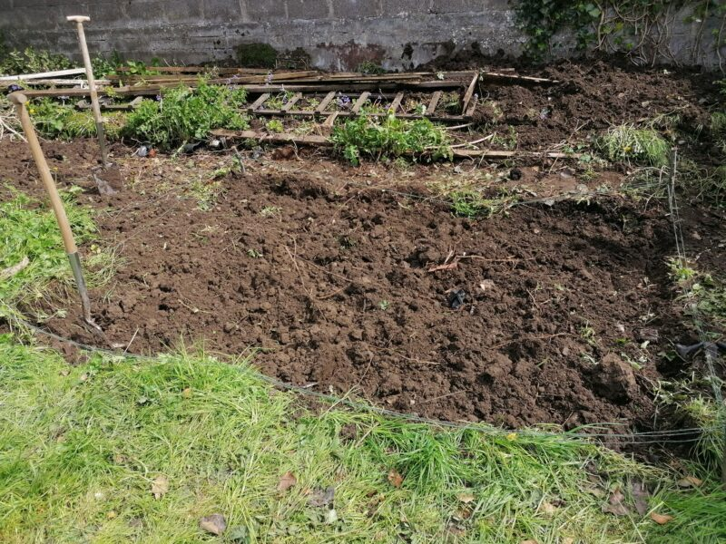 The plot of land which has now been turned and dug up