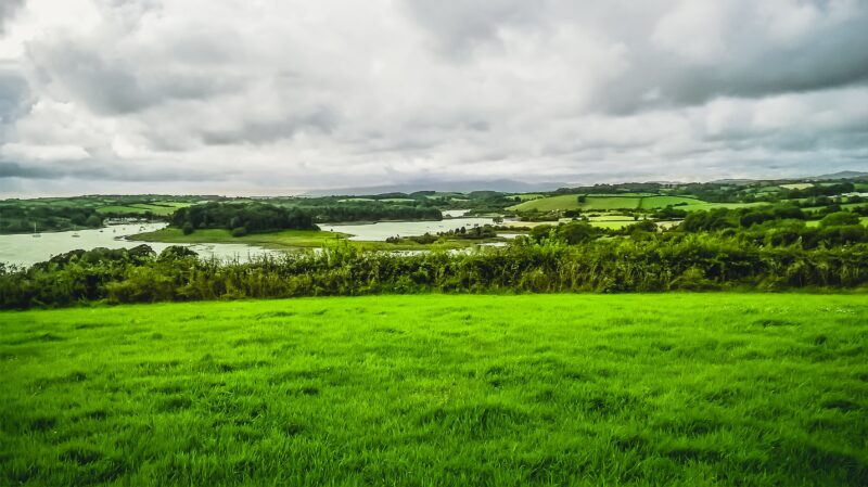 A beautiful field view in Offaly looking onto a lake in the background.