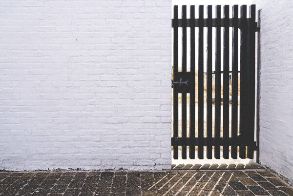 A side gate to a house on the right hand side of the frame. The centre and left of the frame are negative space created by a blank white wall of a building. The light comes through the gate on the right across the bottom of the scene.